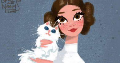 Huzurlarınızda Disney tasarımcılarından şahane bir çalışma: Star Wars ve kediler