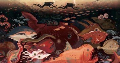Web Galeri: Cornelia Li