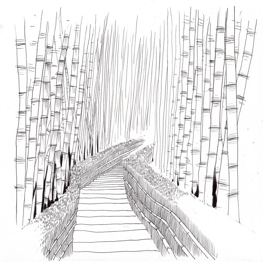 Bambu_WEB