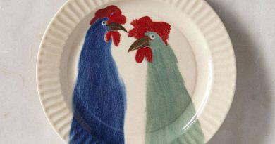 Tavuk portreli ilginç tabak tasarımları