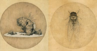 Web Galeri: Donghui Li