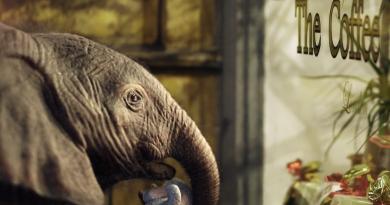 """Dünya Fil Günü şerefine: """"Bertie The Elephant"""""""