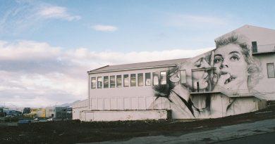 Web Galeri: Guido Van Helten