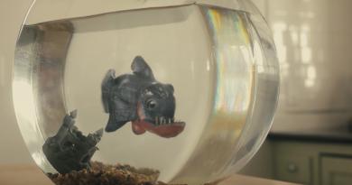 """Günün kısası: """"Fish Friend"""""""