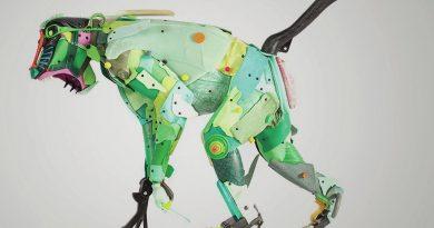 Web Galeri: Gilles Cenazandotti