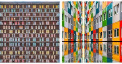 Web Galeri: Paul Brouns