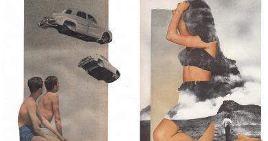 Web Galeri: Amanda Durepos