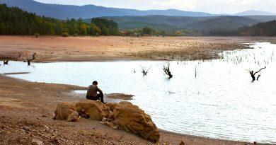 """Nuri Bilge Ceylan'ın incelikli sinemasının en yeni örneği: """"Ahlat Ağacı"""""""