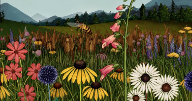 """Günün kısası: """"Story of Flowers"""""""
