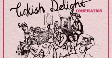 """Kadın/trans/queer sanatçılardan """"Not Your Turkish Delight"""" toplaması geliyor"""