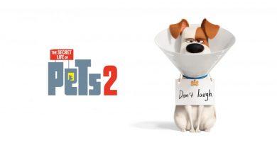 """""""The Secret Life of Pets 2"""" final fragmanı yayınlandı"""