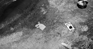 """Laleper Aytek ile yeni sergisi """"Hayat Başka Yerde"""" üzerine"""