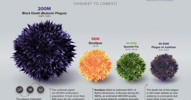 Visual Capital'dan salgın hastalık tarihi infografiği