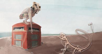Evcilik Günleri: Asena Polat'ın illüstrasyonlarıyla tanışın
