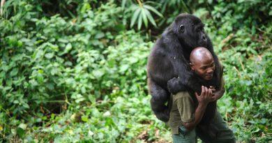 Çevre ve insan ilişkisine dair 20 belgesel