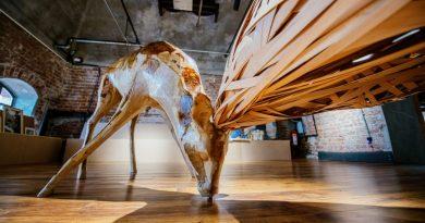 Mamut Art Project, yıl sonuna dek çevrimiçi ortamda