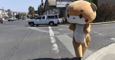 Dünya dönüyor: Los Angeles'dan San Francisco'ya yürüyen ayı kostümlü Jesse Lario ve diğerleri