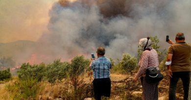 Orman yangınları sonrası gerçek ihtiyaç sahiplerine nasıl ulaşabiliriz? Yangın İhtiyaç yanıtlıyor