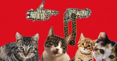 Yeni Run the Jewels albümü kedi sesleriyle tekrar kaydedilebilir