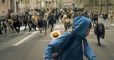 """Cannes'da 'Un Certain Regard' ödülünü kazanan """"White God""""dan fragman"""